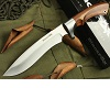 BlackFox Bowie Hunting knife