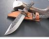 Samy Tiger II Hunting knife, Stag Horn And sandalwood Handle