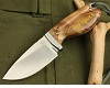 WP Knife Sea Horse Figured handle  HUNTING KNIFE